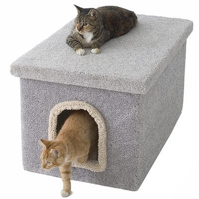 Cat Bench Bed Cabinet And Litter Box The Official