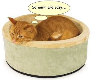 heated_bed_forcats