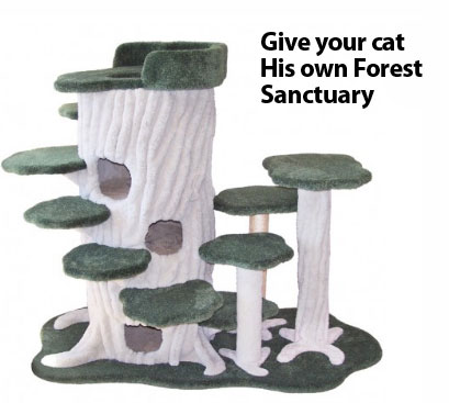purrrwood_kitty_forest