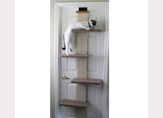 door_cat_shelves2
