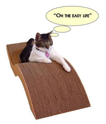 easy_life