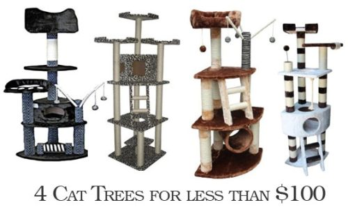 cat_trees_less100