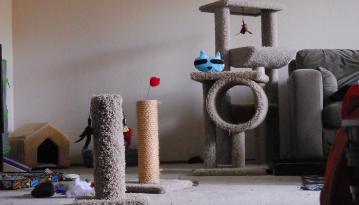 This is where Macky lives. Check out all his cool trees and toys.