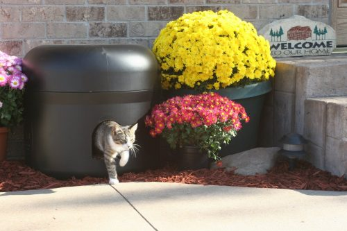 kitty_tube1