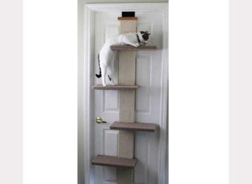 door_cat_shelves2