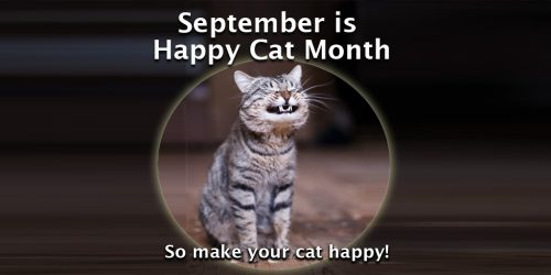 happy_cat_month